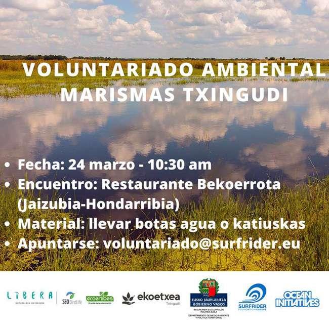 recogida de basura marina-ekoetxea txingudi-surfrider España