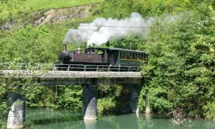 ¿ Nos vamos de excursión al tren de vapor ?