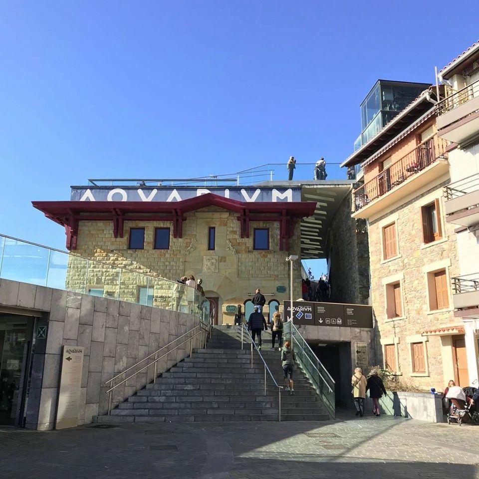 Aquarium (Donostia San Sebastián)/Explorando el Aquarium