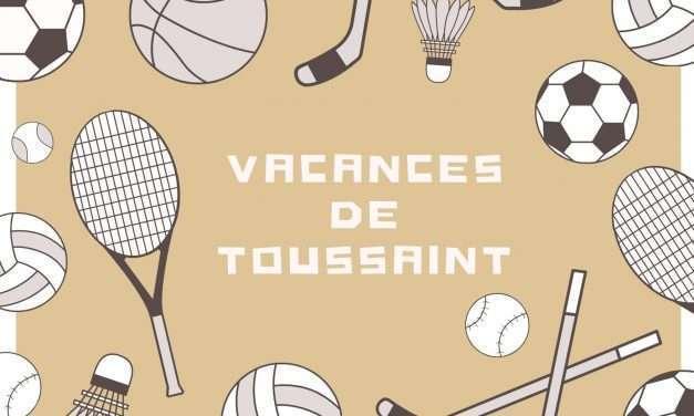 Guía de ludotecas vacances de toussaint 2020: alumnos escolariazados en francia