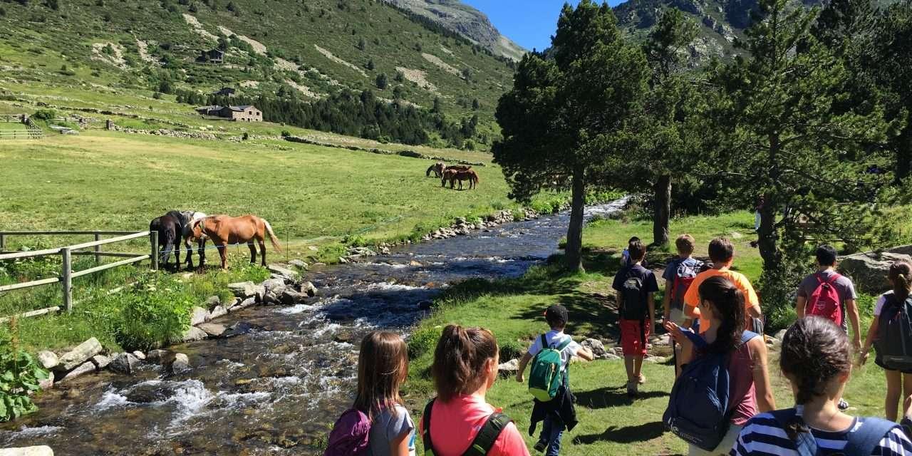Campamentos de verano en inglés con opción de francés en los pirineos