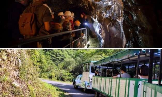 Visita a las minas de Arditurri en Tren Verde