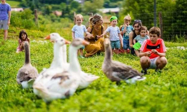 ' Abereen artean ', visita entre animales en Kutxa Ekogunea